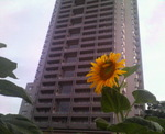 image/2011-09-13T00:01:19-1.jpg